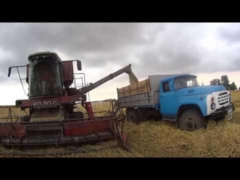 Засуха 2018 ячмень самодельный комбайн и урожай под 50Ц