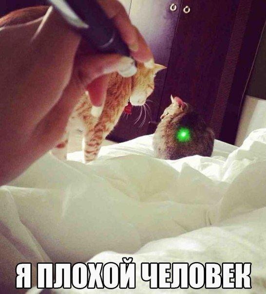 _EDUTXsdJP4.jpg
