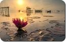 Какие бы временные переживания у тебя ни возникли, просто расслабься и пребывай в том…