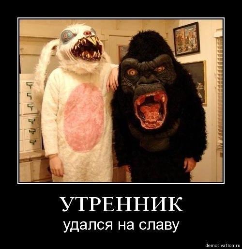http://cs14115.userapi.com/c7008/v7008113/234b/-wFpl0RSiuA.jpg