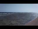 Красное море'18.