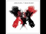 kings of leon-17
