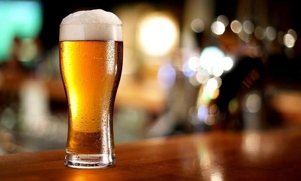 Количество алкогольных магазинов в Усть-Илимске растёт как на дрожжах