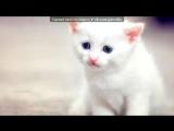 Красивые Фото webday.ru под музыку Aron Chupa I Am An Albatroz - TrapBooy Remix. Picrolla