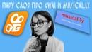 Пару слов про kwai и musical.ly