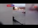 Ирак Террориста ИГИЛ убивает во время боя иракский снайпер 18 .mp4