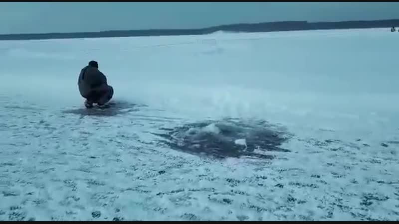 Рыбалка на Балтымском автодроме. Комментарий Ченцова