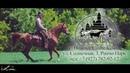 Конный Клуб Лошадиное Царство г. Тольятти