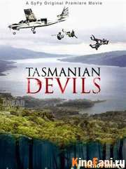 Тасманские дьяволы / Tasmanian Devils