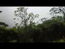 4 Vicita Ala Cabaña Del Bosque Expediccion Ramon Trejos CR CA