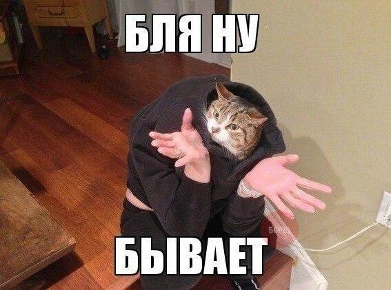 exSSgTTMviE.jpg