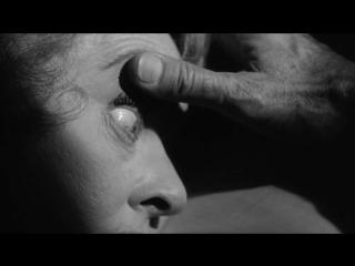 ТИШЕ... ТИШЕ, МИЛАЯ ШАРЛОТТА (1964) - ужасы, триллер, детектив. Роберт Олдрич 1080p