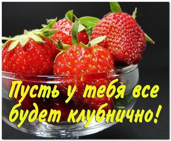 9SxGMdDN_vI.jpg