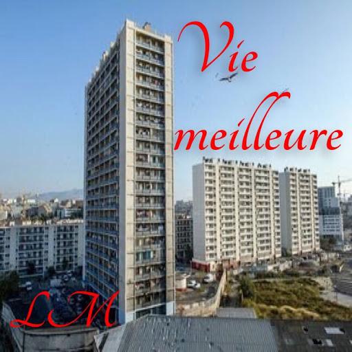 LM альбом VIE MEILLEURE