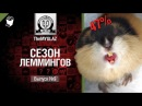 Сезон леммингов №9 - от THEMYGLAZ [World of Tanks] [wot-vod.ru]
