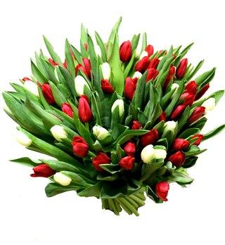 Цветы по оптовым