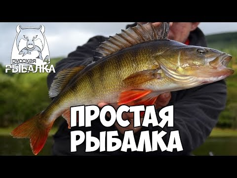 Простая рыбалка - Русская Рыбалка 4/Russian Fishing 4