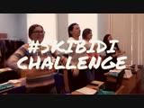 #skibidi challenge