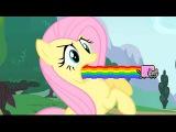 MLP My Little Ponyanyanyanyanyanyanya! (YTPMV)