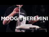 Moog Theremini Tutorial with thereminist Lydia Kavina