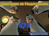 Пуп на Пингвинов из Мадагаскара от Фьючуресоника