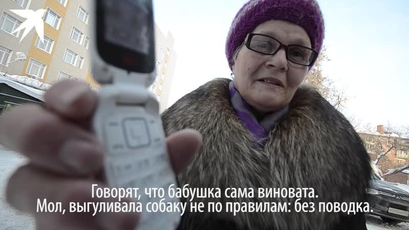 Отдайте Жорика в Новосибирске бабушка через полицию пытается вернуть свою собаку