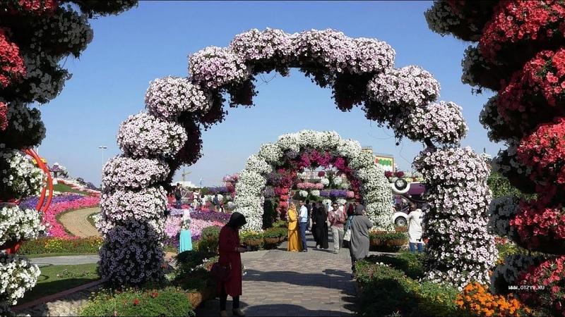 Лучший в мире парк цветов в Дубаи. The world's best flower park in Dubai. Very beautiful music.