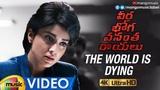 The World is Dying Video Song Veera Bhoga Vasantha Rayalu Movie Songs Shriya Saran Mango Music