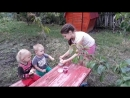 Наши жорики обжорики в деревне