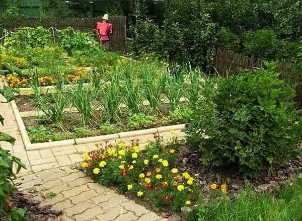 о пользе продуктов в хозяйственных нуждах садовода. оказывается, и в продуктовом отделе обычного магазина или супермаркета найдется не мало полезных товаров для борьбы с вредителями и болезнями