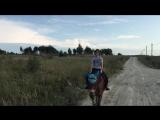 Запасливая лошадка)