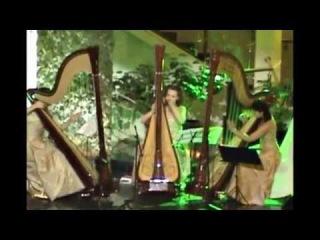 Атриум ГАБТ. A. L. Webber - The music of the night. Harp cover. Espressivo