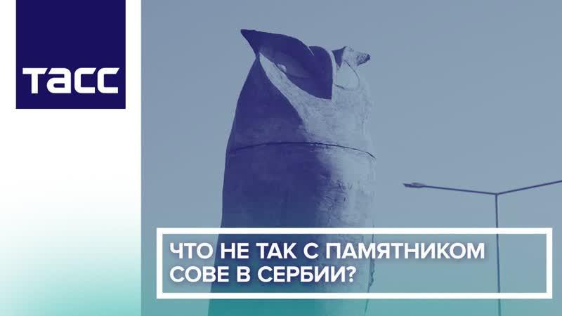 Что не так с памятником сове в Сербии