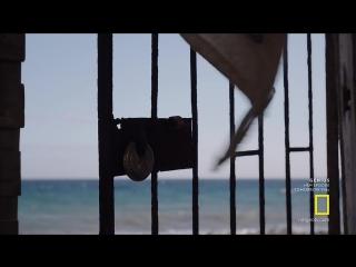 Осушить океан: затонувший город пиратов / Drain the Sunken Pirate City (2017)