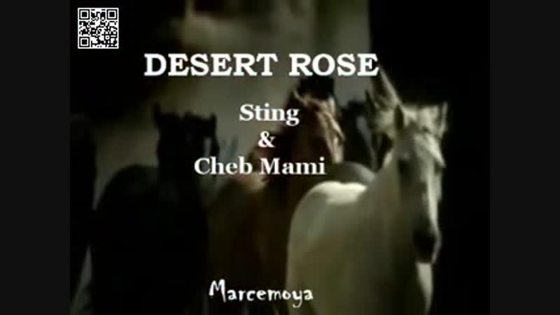 DESERT ROSE Sting Cheb Mami Subtitulos en español - YouTube