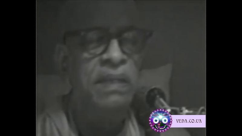 Шрила Прабхупада - ШБ 1.2.6 Полюбить Кришну