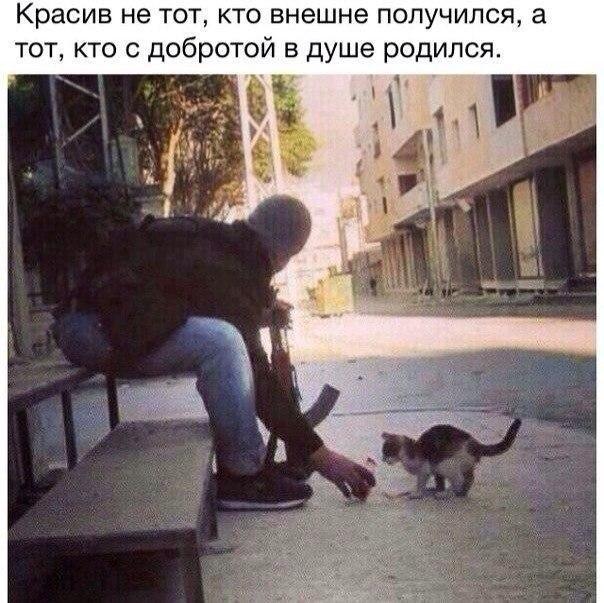 Фото №421439761 со страницы Жаната Шарипова