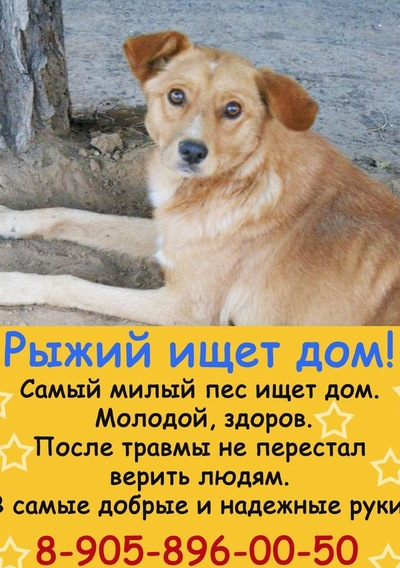 Мария Громкова, 20 июня , Орск, id51992316