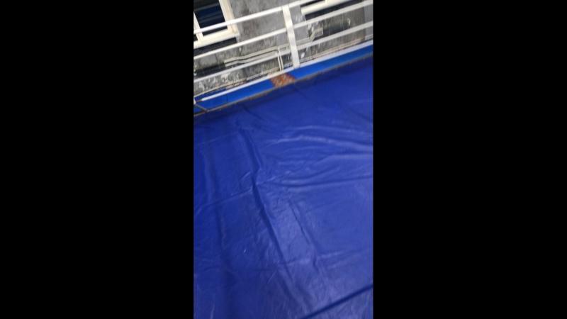 GLADIATOR FIGHT CLUB — Live