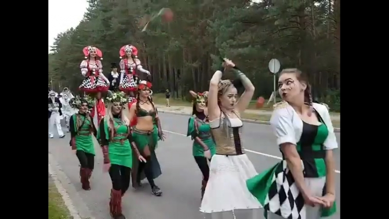 парад Висагинас