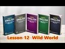 Lesson12 Wild World By Cat Stevens