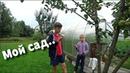 Мой сад Выбор плодовых деревьев