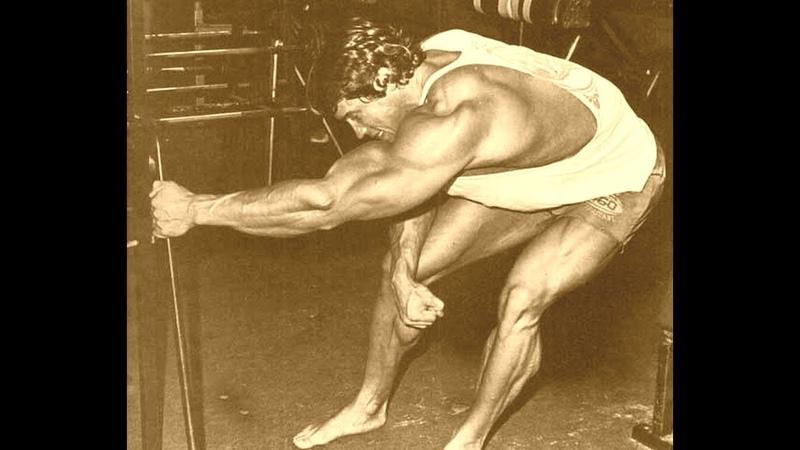 Arnold Schwarzenegger Bodybuilding Exercises Motivation Training
