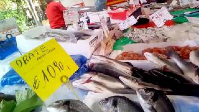 Рыбный рынок. Милан.Италия 2017.Видео1. Алла Харина. Мои круизы