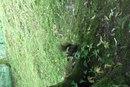 Олена Бурець фото #49