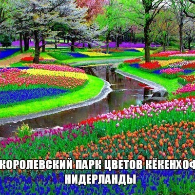 Сабина Аликова, 25 октября , Камышин, id36710086