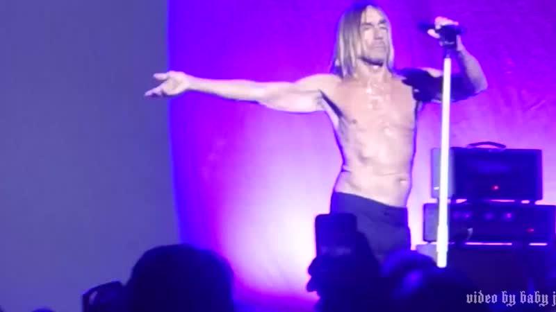 Iggy Pop-PARAGUAY-Live @ The Masonic, San Francisco, CA, March 31, 2016 (online-video-cutter.com)