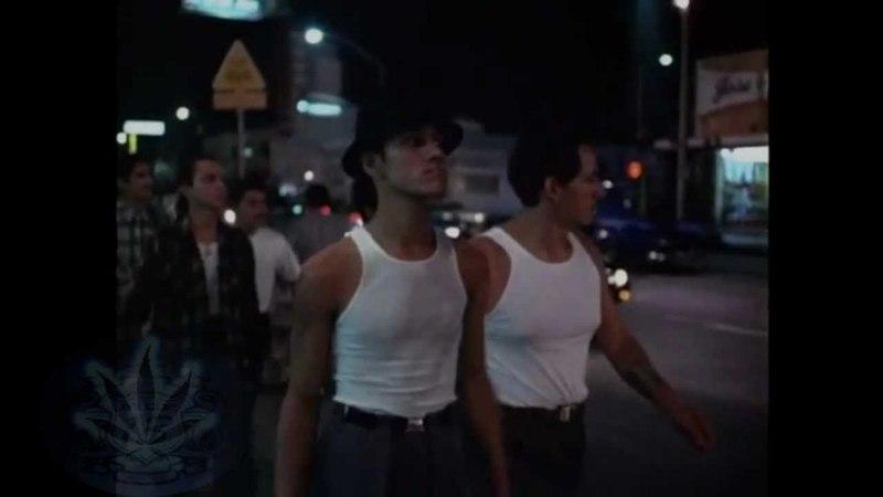 .:*Boulevard nights -Lil Rob -By Ese Piyo Trece