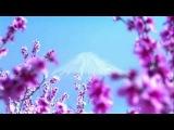 Léo Delibes - The Flower Duet (Sous le dôme épais)