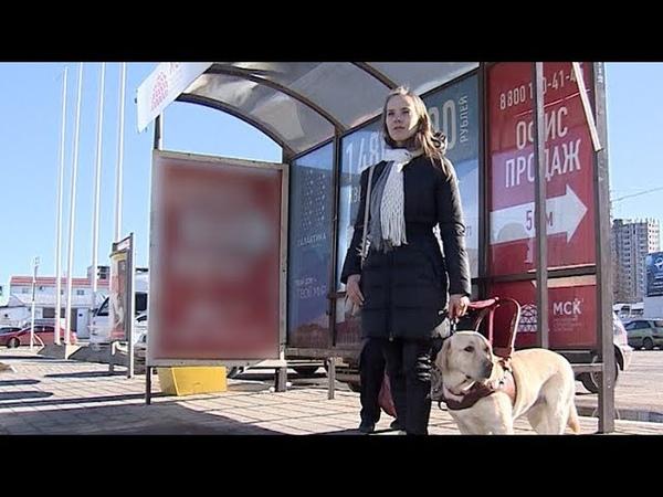 Самая доступная среда: под Краснодаром водитель автобуса не пустил слабовидящую девушку в салон